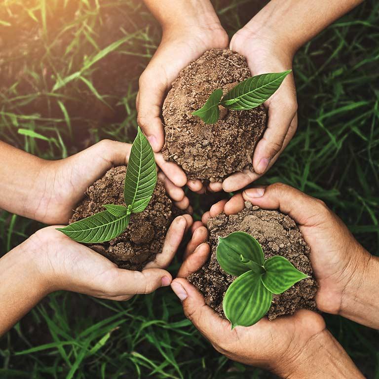 Achieving Sustainable Development Goals Through Entrepreneurship and Innovation